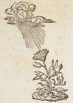 Pictura of Paradin, Claude: Devises heroïques (1557): Non inferiora sequutus.