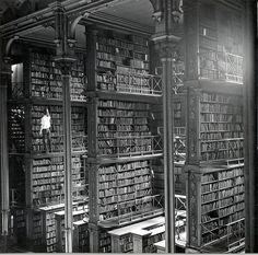boeken en boeken en boeken