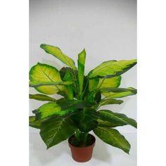 Planta Artificial Diefembachia Camila