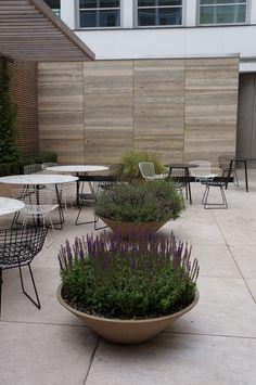 Oliver's Yard Stone Cladding, Potted Plants, Planting, Concrete, Pots, Yard, Pot Plants, Stone Veneer, Plants