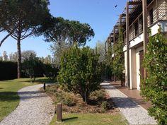Finalmente un bel sole scalda la #Maremma #Toscana, si respira aria di primavera.