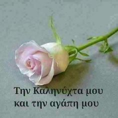My good night and my love Greek Easter, Beautiful Pink Roses, Greek Language, Good Night Quotes, Good Morning, I Am Awesome, Diy And Crafts, My Love, Gardening