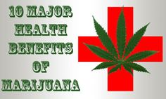 Top 10 Health Benefits from Marijuana--> http://www.undergroundhealth.com/top-10-health-benefits-from-marijuana/
