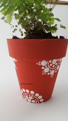 Homemade Mothers Day Gift. A mandala dot art design on a potted plant - made with the Mandala Dotting Tools Add a plant, seeds or Mandala Dotting Tools to make it complete
