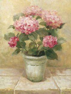 Pot of Pink Hydrangea