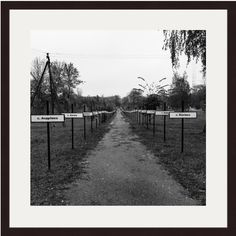 Chernobyl Print, Pripyat Print, Abandoned, Ukraine Print, Ukraine Photography, Ukraine Art, Graveyard, Memorial, Path, Grim, Tragedy, Grey by AmadeusLong on Etsy