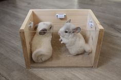 chinchilla wooden Bath the top hold by magnets