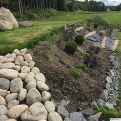 Coming across rock landscaping ideas backyard can be a bit hard but designing a rock garden is one of the most fun and creative forms of gardening there is. Sloped Backyard Landscaping, Landscaping Around Trees, Landscaping On A Hill, Landscaping Retaining Walls, Sloped Garden, Landscaping With Rocks, Landscaping Ideas, Backyard Ideas, Rock Garden Design