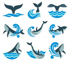 Wild whale in sea waves and water splashes vector icons. Animal wildlife whale in blue sea, illustration of marine animal Water Splash Vector, Sea Artwork, Painted Ukulele, Animal Art, Sea Drawing, Sea Illustration, Art, Wave Illustration, Whale Tattoos