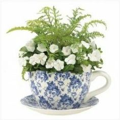 If you enjoy having houseplants, you will certainly enjoy teacup planters. Yep, exactly. Large teacups turned into planters. In most cases, the...