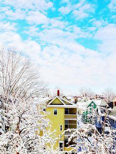 Frosty Morning, Somerville | BradKellyPhoto