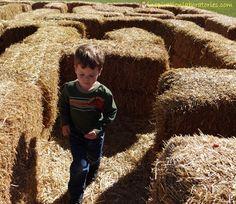 20 Maze Activities for Kids Straw Maze