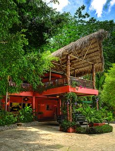 The Belcampo Eco-lodge Belize features a spa, dining, lounges, coffee bars, and gorgeous suites. #honeymoon #green #eco #travel