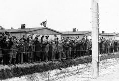 """""""Prisoners at the electric fence of Dachau concentration camp cheer American soldiers in Dachau, Germany in an undated photo. Some of them wear the striped blue and white prison garb. They decorated their huts with flags of all nations which they had made secretly as they heard the guns of the 42nd Rainbow Division getting louder and louder on the approach to Dachau."""""""