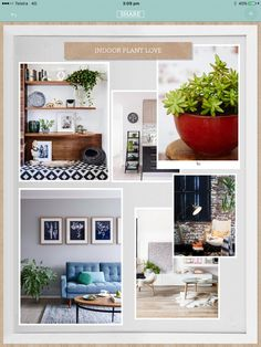 Here's our recipe for renovation with the help of the House Rules, powered by Home Beautiful app! House Rules, Mood Boards, Indoor Plants, The Help, Gallery Wall, Home And Garden, Interior, Beautiful, Home Decor