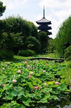 Lotus pond and five-story pagoda To-ji, Kyoto, Japan