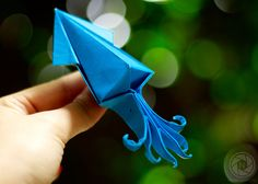 https://flic.kr/p/bCTUeX | Squid Origami | A squid origami by my brother. Shot using a Canon 1000d and 50mm lens