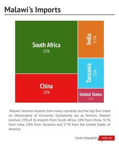 Infographic: Malawis Imports -