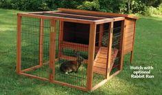 Rabbit Care - Backyard Bunnies