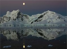 I want to go to Antarctica so badly, it seems like such an incredible place! Places To Travel, Places To Go, Shoot The Moon, Water Reflections, Worldwide Travel, Heaven On Earth, World Traveler, Amazing Photography, Tourism