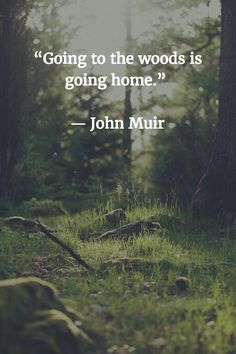 """""""Going to the woods is going home"""" -John Muir"""