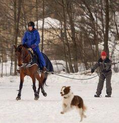 Weekly Instagram Round-Up   HORSE NATION