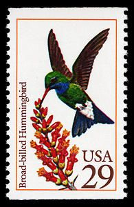 Broad-billed hummingbird stamp, issued in 1992.