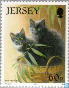 Postage Stamps - Jersey - Cats More about #stamps: http://sammler.com/stamps…