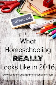 What Homeschooling REALLY Looks Like in 2016