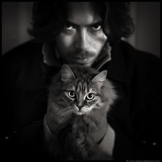 La boîte à images: Catnapping
