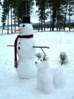 snow art snowman and snow dog Winter Fun, Winter Time, Winter Christmas, Christmas Cards, Merry Christmas, Funny Christmas, Winter Ideas, Winter Months, Christmas Christmas
