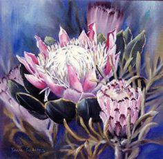 Protea by patrice pendarvis Pastel ~ x Protea Art, Protea Flower, Watercolor Sketch, Watercolor Flowers, Diy Canvas Art, Colored Pencils, Pastels, Watercolors, Flower Art