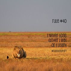 #rulestouplift #SS #dailyquotes #quotesdaily #neverlose #inspirationalquotes #inspiration #learningquotes