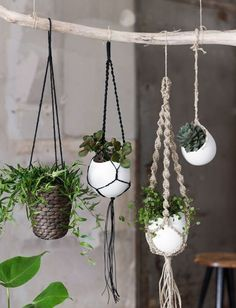 Macrame Pot Plant Hanging Baskets Free Pattern