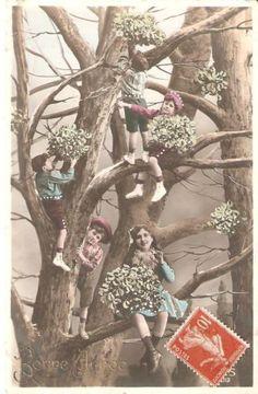 French-RPPC-Children-Climbing-in-a-Tree-Bonne-Annee