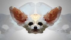 Fennec fox by morgana2194.deviantart.com on @DeviantArt