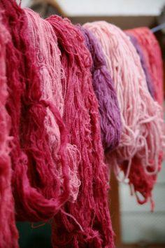 Alpaca fibers of Peru