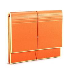 Accordian File with 12 Pockets and Flap in Orange