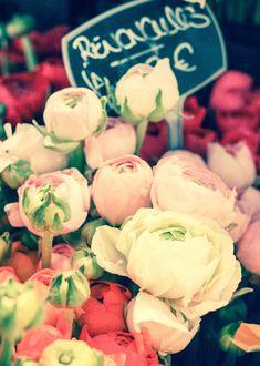 Paris Photography, Romantic Ranunculus For Sale, Paris Street Market, flower decor, chalkboard menu, Paris Wall Art