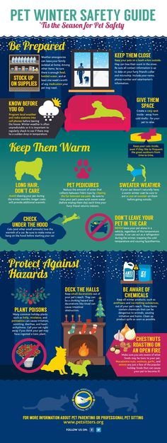Winter Weather & Holiday Safety Infographic: When it comes to the winter weather and holiday seasons, be sure you're keeping safety in mind when caring for your pet.