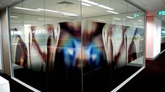 http://www.visiongraphics.com.au/images/display_gallery/034_Printed%20Glass%20Films_.jpg