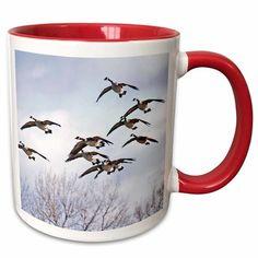 Symple Stuff Sundown Branta Canadenis Coffee Mug Color: Blue Espresso Cups Set, Cappuccino Cups, Coffee Mug Sets, Mugs Set, Canadian Gifts, Red Mug, Custom Printed Mugs, Cup And Saucer Set, Iowa