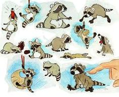 Brother Bear II submitted by Skidd Baby raccoon model sheet. Baby Raccoon, Racoon, Raccoon Illustration, Illustration Art, Cartoon Drawings, Animal Drawings, Raccoon Drawing, Brother Bear, Illustrations