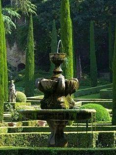 Maravilloso Jardin.