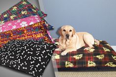 Print Design Pet Bed