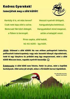 Tree Day, Bird, Animals, Bees, Animales, Animaux, Birds, Animal, Animais