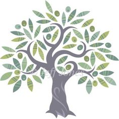 Olive Tree Stock logo Illustration Image