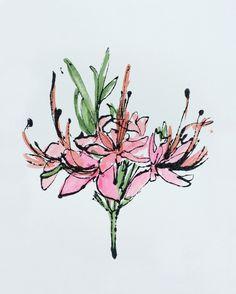 Botanical 2 by Courtney Cerruti on Artfully Walls