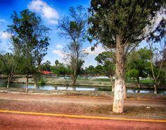Lago ciudad deportiva - Saltillo, Coah.