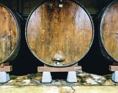 Txotx at a cider house. Chestnut barrels